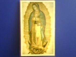 Fotografía de la Imagen de Nuestra Señora de Guadalupe